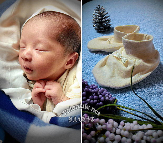Taipei Life New Year Baby Romanticism 台北生活 新年婴儿 浪漫主义 Yalan雅岚文艺博客